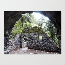 Forest House Canvas Print