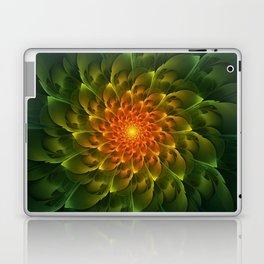 Beautiful Orange-Green Desert BarrelCactus Spiral Laptop & iPad Skin