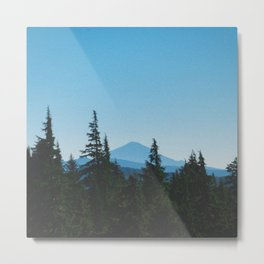 Evergreen Scapes Metal Print