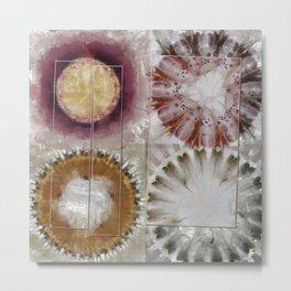 Inexhaustible Spacing Flower  ID:16165-130627-15901 Metal Print