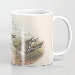 070 Dunlin pelidna cinclus4 Coffee Mug