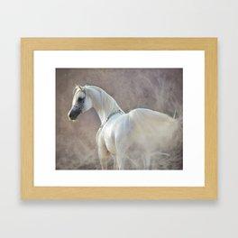 Arabian mist Framed Art Print