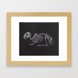Rabbit Skeleton Framed Art Print