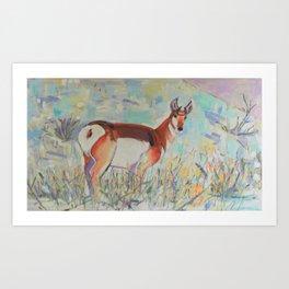 Pronghorn in Yellowstone Art Print