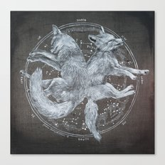 The White Foxes Canvas Print