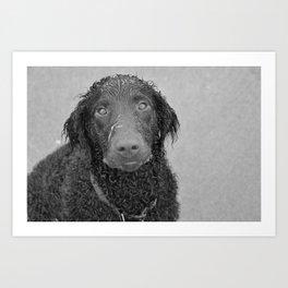 greyscale hound Art Print