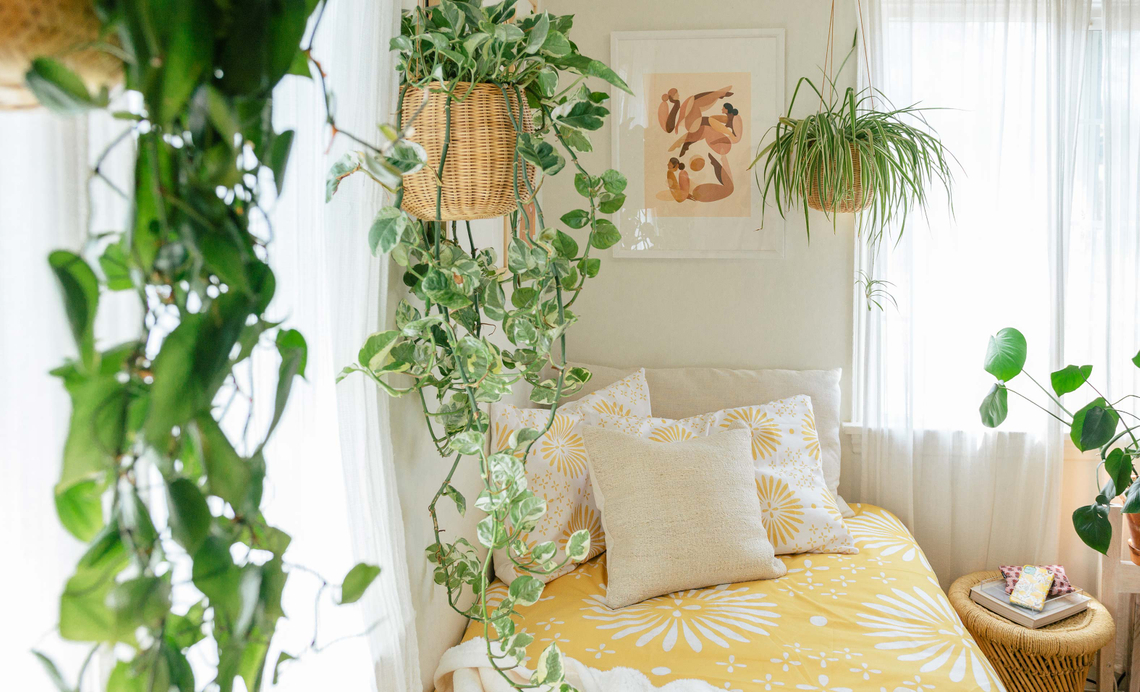 framed print and plants hanging over a bed