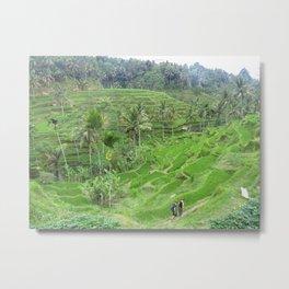 Terraced Fields Metal Print