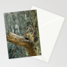 Brown Squirrel Stationery Cards