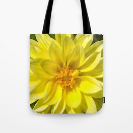 Floral Beauty #5 Tote Bag