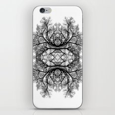 The wonderful world of trees. iPhone & iPod Skin