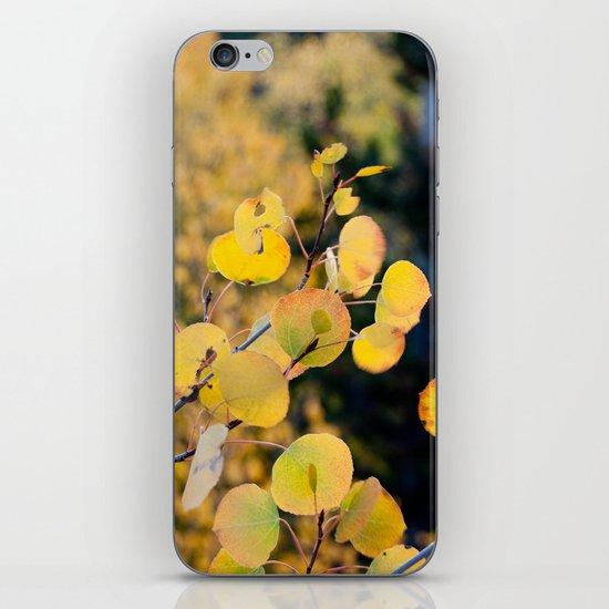 Golden Aspen iPhone Skin