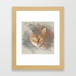 Sundara Guardian Shiva the Cat Framed Art Print