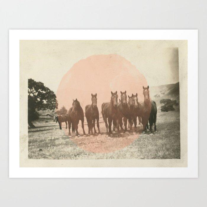 Band of Horses - Peach Art Print