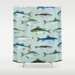 School of Fish No. 2 Shower Curtain