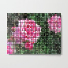 Pink Roses in Anzures 1 Mosaic Metal Print