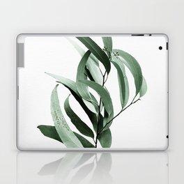 Eucalyptus - Australian gum tree Laptop & iPad Skin