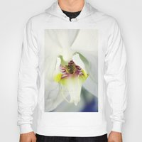 orchid Hoodies featuring Orchid by Falko Follert Art-FF77