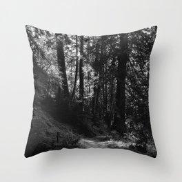 Big Sur Hike Throw Pillow