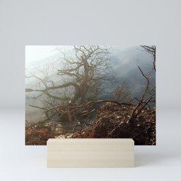 Fallen Tree Mini Art Print
