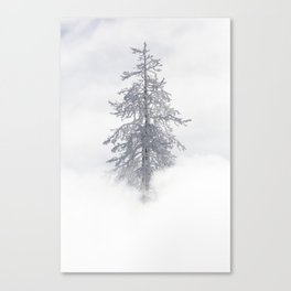 Yellowstone National Park - Ice Covered Tree Canvas Print