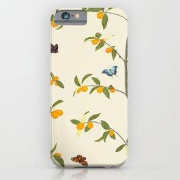 Jenny Chinoiserie Kumquat iPhone Case
