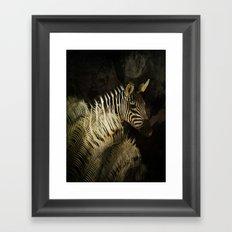 The Zebra Framed Art Print