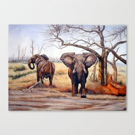 Elephants taking toll Canvas Print