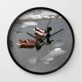 Ducks and a melting pond Wall Clock