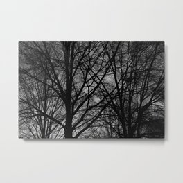 Thick Silhouetted Trees Metal Print