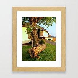 Tree trunk bench on a summer evening | landscape evening Framed Art Print