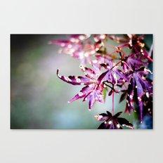Seasons Come, Seasons Go Canvas Print