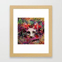 The Graffiti Cat Framed Art Print