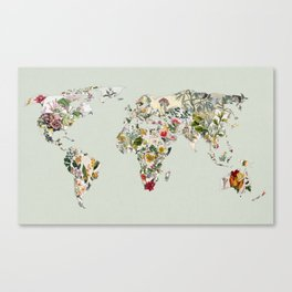Vintage Botanical World Green Canvas Print