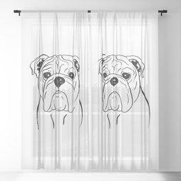 English Bulldog (Black and White) Sheer Curtain