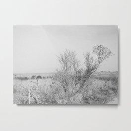 BLUE MOON VI (B+W) / Alviso, CA Metal Print