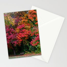 Wildwood Metropark Stationery Cards