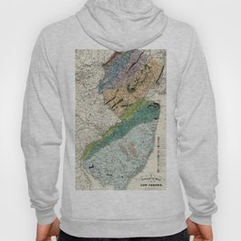 Geological Map of New Jersey 1839 Hoody