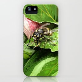 Wasp on flower16 iPhone Case