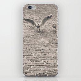 Bird2 iPhone Skin