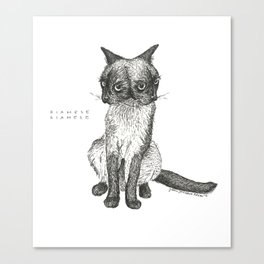 Siamese Siamese Canvas Print