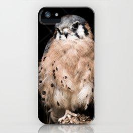 Desert Bird Behind Fence iPhone Case