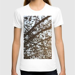 Light Leak on a Berry Tree T-shirt