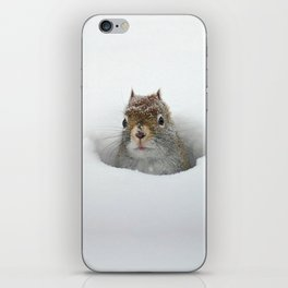 Pop-up Squirrel in the Snow iPhone Skin
