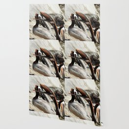 Yawn Yoga Wallpaper