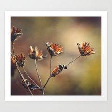The Colors of Autumn Art Print