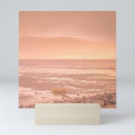 Birds on Low Tide Sunset above the ocean | Beach photography art print Mini Art Print