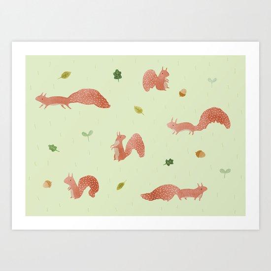 Red Squirrels Art Print