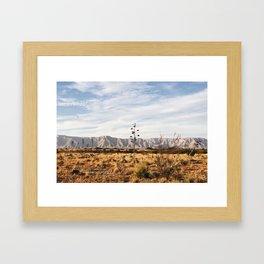 Guadalupe Mountains Scene Framed Art Print