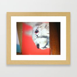 Hoppy Hour  Framed Art Print
